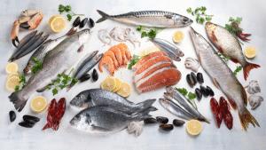 poisson et allaitement