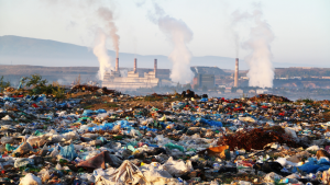pollution agroalimentaire